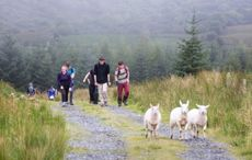 New video campaign set to attract domestic tourists to County Leitrim this year
