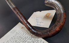 Michael Collins' walking stick and intelligence dossier among treasures up for auction