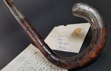 Michael Collins' walking stick sells for astonishing £52,000 at auction