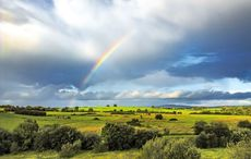 Thumb irish rainbow ireland countryside   getty