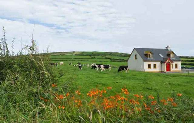 33% of Americans have considered by property in Ireland in the past decade.