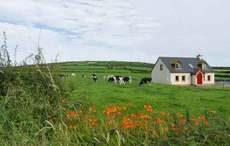 One third of Irish Americans would like to retire in Ireland