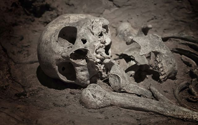There are a great number of Viking warriors buried beneath Dublin say archaeologists.