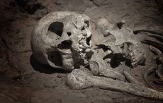 Thumb_mi-viking-skeleton-dig-archaelogy-getty1