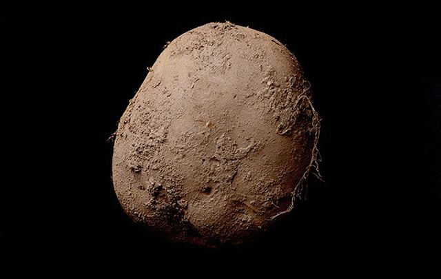 Hottest photographer in the world, Kevin Abosch, gets $500,000 per picture and sold this potato shot for a cold $1 million.