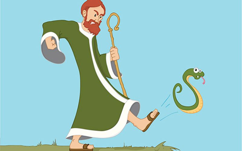 Why Arent More Students With >> Did St. Patrick banish all the snakes from Ireland? | IrishCentral.com