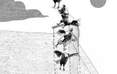 Thumb_cut_cormac_turf_last_birds_caty_bartholomew