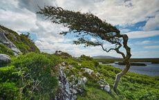Thumb_bay-coast-connemara-galway-tourism-ireland