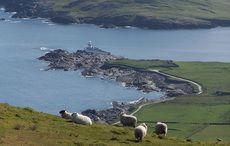 Thumb_cut_medium_valentia_island_lighthouse_tourism_ireland