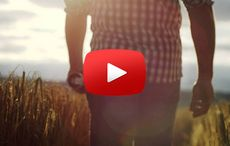 Thumb_cut_guinness_barley_farmers_play_image