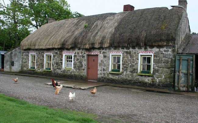 Race To Save One Of Ireland S Last Grass Thatched Cottages