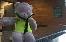 Thumb_teddy-cork-airport