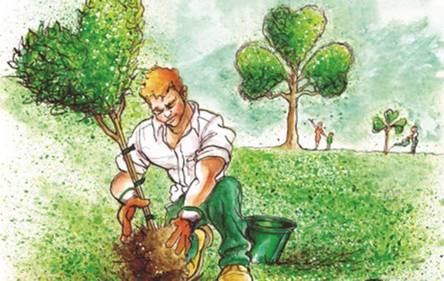 Emerald Heritage: A native Irish tree planted on conserved Irish land - the perfect way to celebrate St Patrick's Day or Easter.