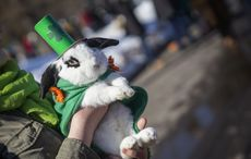 Dress Up Your Pet Day: The cutest pets of St. Patrick's Day