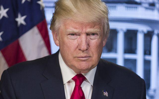 President Donald Trump's official White House portrait.