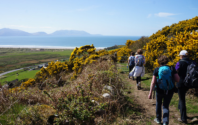 Walking in the steps of Saint Brendan the Navigator, along the Kerry Camino.