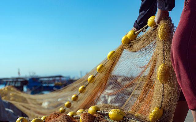 A fisherman pulling a net.