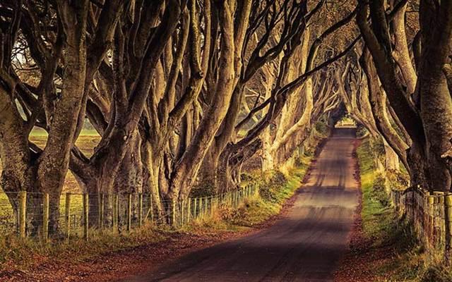 Season 7 Game Of Thrones Released As Northern Ireland