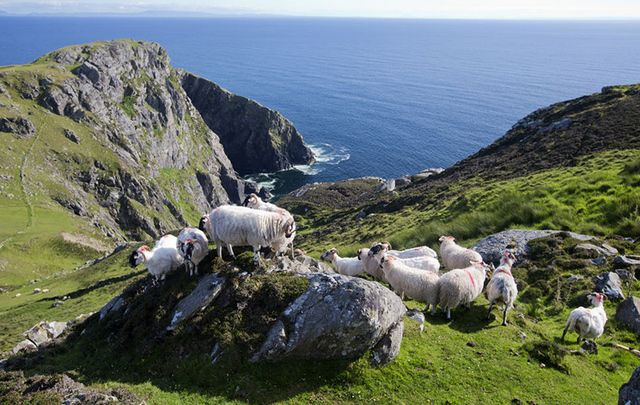 Slieve League Peninsula, County Donegal.
