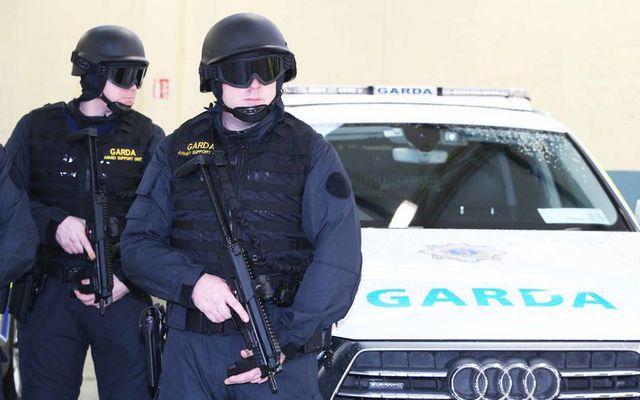 Special armed Garda.