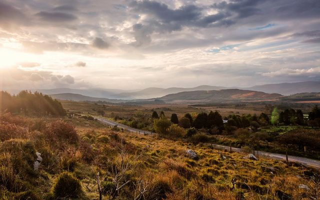 The road to Kenmare.