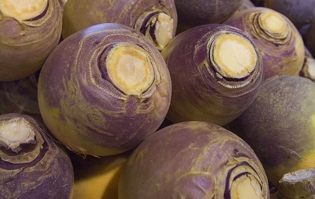 How to prepare rutabaga? Commonly known as the turnip in Ireland.