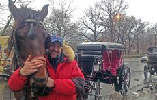 Thumb_mi_new_york_central_park_horse_carriage_colm_mckeever_iv