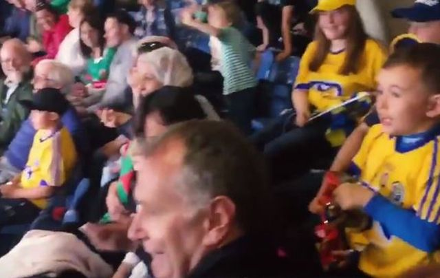 Syrian refugees cheering their teams in Croke Park.