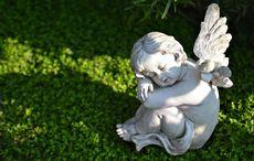 Thumb_angels_plot_baby_graveyard_cementery_istock