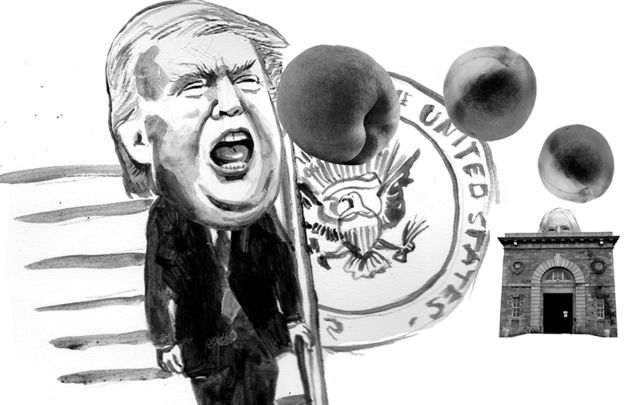 Cormac MacConnell\'s imagined impeachment of Donald Trump at Shannon, on St. Patrick\'s Day.