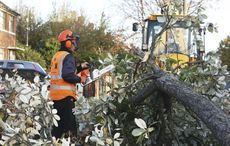 Thumb_storm-ophelia-clear-trees-rolling-news