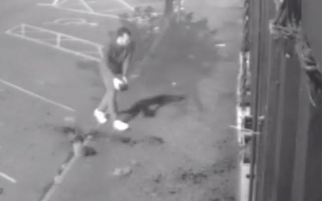 Wow! A store in Co. Louth is on the hunt for a good Samaritan who cleaned up vandalism to their store in the middle of the night.