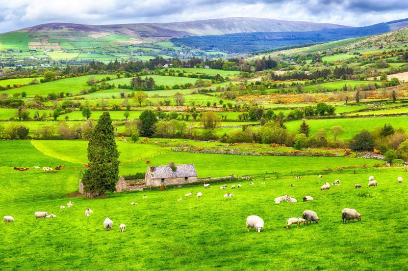 The 21 Best Places In Ireland To Get The Ride | uselesspenguin.co.uk