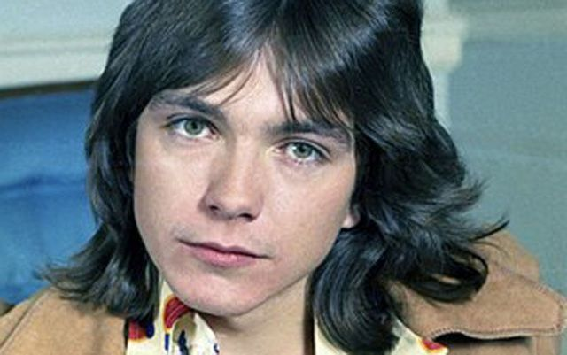 Is david cassidy bisexual