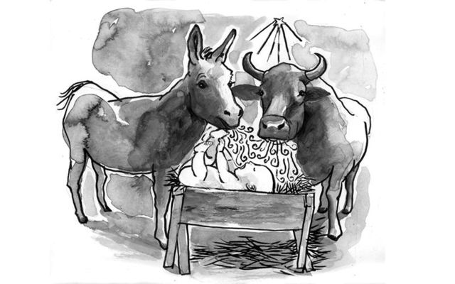 Ruth and Barnabas, a donkey and an ox, witnessed the special birth of Jesus Christ, on Christmas.