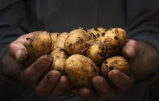 Thumb_potato_hands_getty