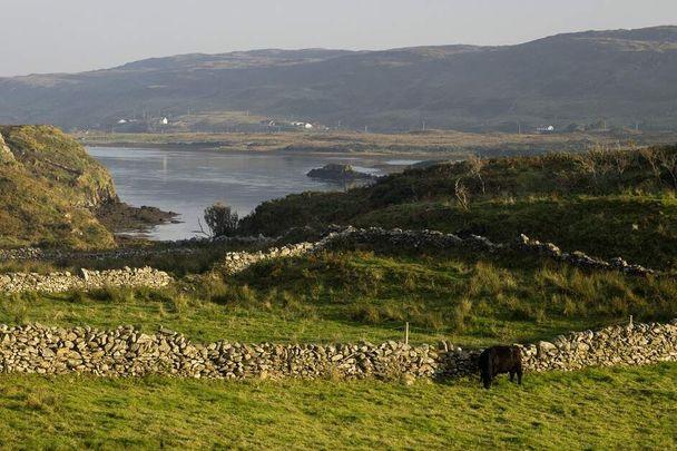 Streamstown Bay on Omey Island in Connemara, where a Dobhar Chu was spotted in 2000.
