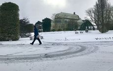 Thumb_snow_national_botanic_gardens_dublin_rollingnews