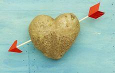 Thumb_potato_love_heart_istock