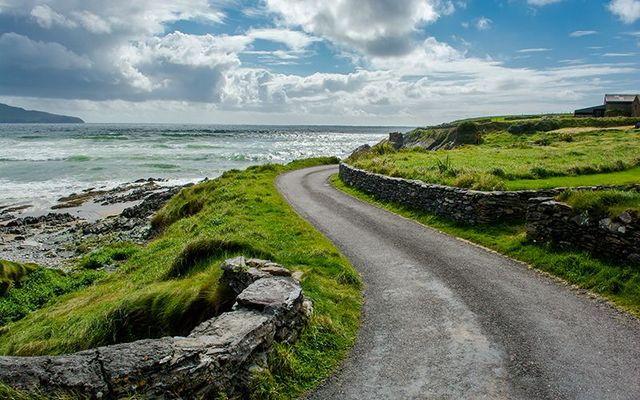 The lush lush green of the Wild Atlantic Way, in the west of Ireland.
