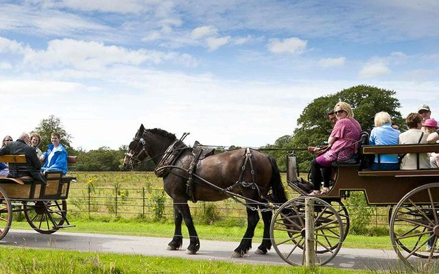 Jaunting cars / jarvey\'s in Killarney, County Kerry.