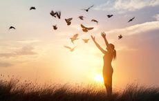 Thumb_bird_simple_free_woman_field_istock
