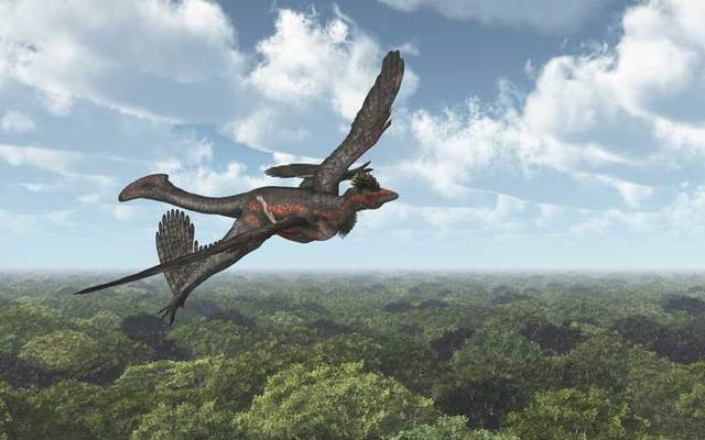 Dinosaur Microraptor.