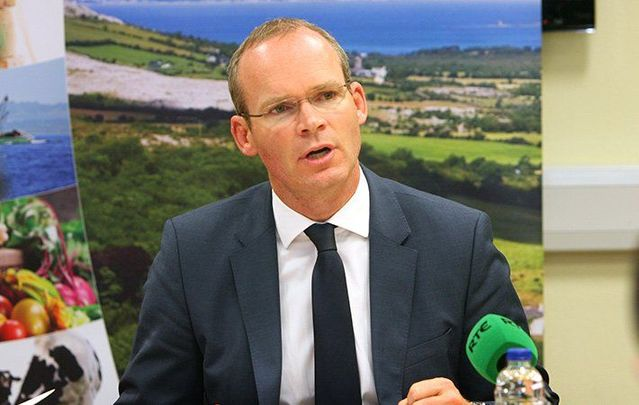 Ireland\'s Minister for Foreign Affairs and Deputy Leader of the government Simon Coveney.