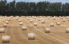 Thumb_mi_dry_field_naas_kildare_drought_rollingnews