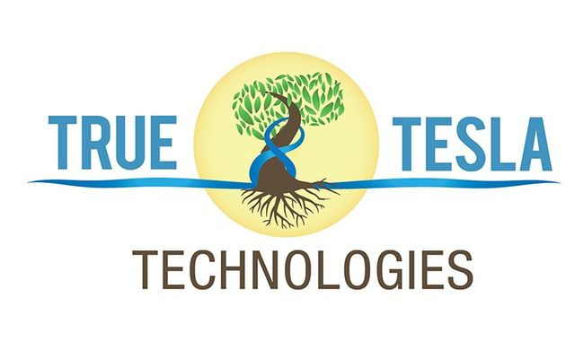 True Tesla Technologies hosting Liberty Festival, Osijek.