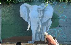 Thumb_waterford_walls_fb