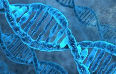 Thumb_best-dna-ancestry-test