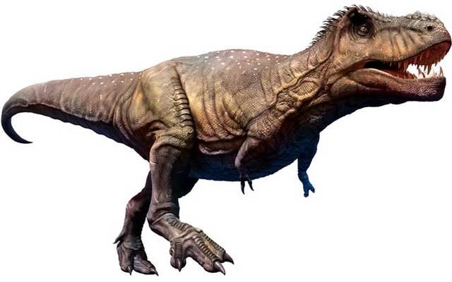 Tyrannosaurus, a type of Theropod.