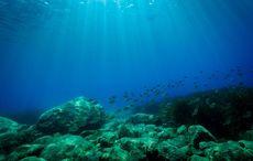 Thumb_mi_under_water_sea_ocean_getty